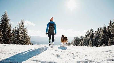 Piesze wędrówki z psem: aktywny wypoczynek dla ludzi i zwierząt