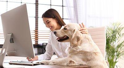 Home office z psem – jak przygotować się na pracę zdalną w towarzystwie czworonoga?